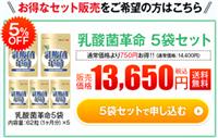 乳酸菌革命 5袋セット